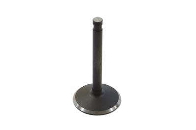 Stainless Steel Natural Intake Valve