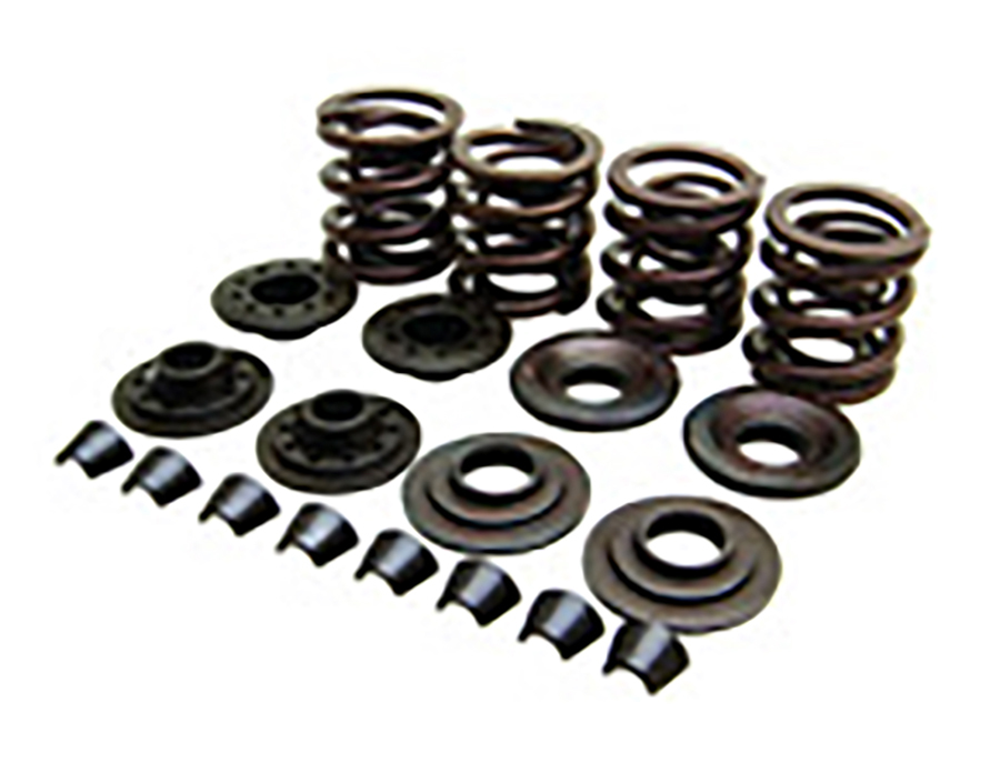 Kibblewhite Valve and Spring Kit