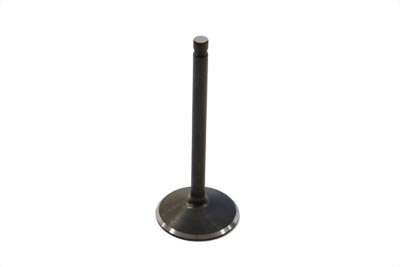 Stainless Black Diamond Intake Valve