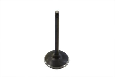 Black Diamond Stem Intake Valve