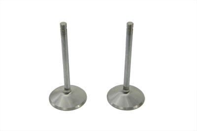Stainless Steel Intake Valves