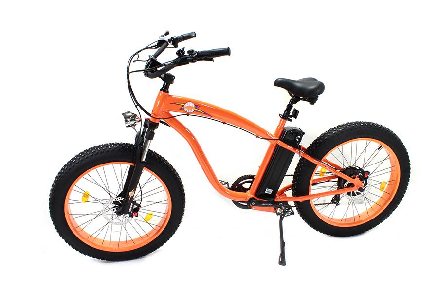 E-Bike 36 Volt 750 Watt
