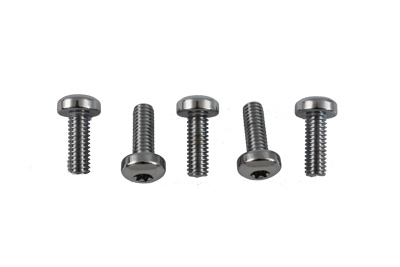 Chrome Front Brake Disc Bolt